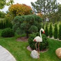 вариант использования красивых растений в ландшафтном дизайне дома картинка