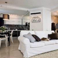 вариант светлого декора гостиной спальни 20 кв.м. фото