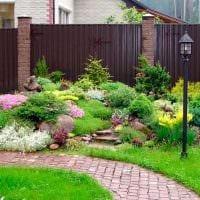 идея применения ярких растений в ландшафтном дизайне дома фото