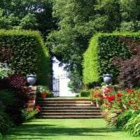 пример применения ярких растений в ландшафтном дизайне дома картинка
