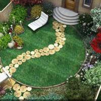 идея использования красивых растений в ландшафтном дизайне дачи фото
