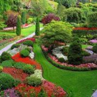 вариант применения красивых растений в ландшафтном дизайне дачи фото