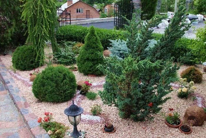 идея применения светлых растений в ландшафтном дизайне дома