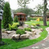 идея использования красивых растений в ландшафтном дизайне дома фото