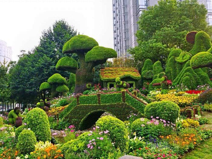 пример использования ярких растений в ландшафтном дизайне дома