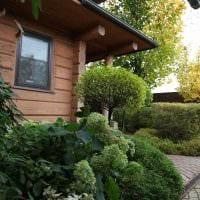 идея использования ярких растений в ландшафтном дизайне дома фото