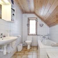 дизайн совмещенной ванной