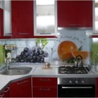 фартук с фотопечатью для дизайн кухни 5 квадратных метров