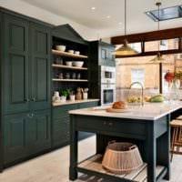 дизайн кухни студии в темных тонах