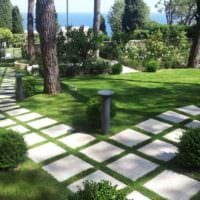 пример применения красивых садовых дорожек в ландшафтном дизайне картинка