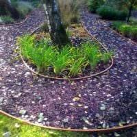 вариант использования ярких садовых дорожек в дизайне двора фото