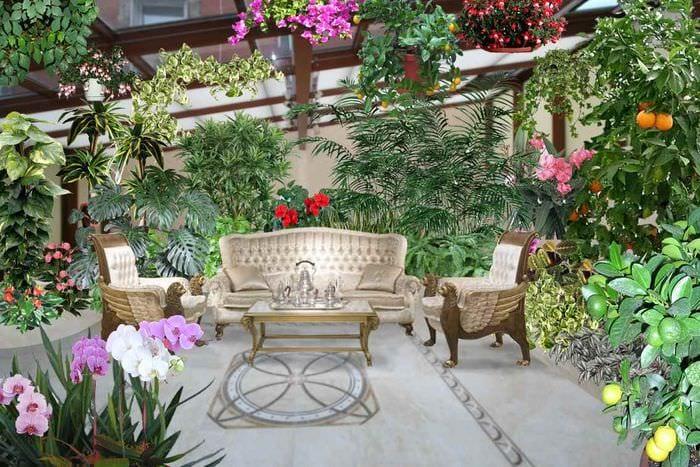 вариант применения ярких идей оформления зимнего сада
