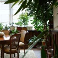 вариант использования ярких идей оформления зимнего сада в доме картинка