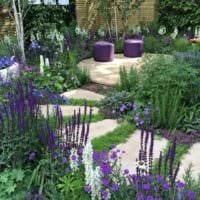 вариант применения светлых садовых дорожек в дизайне двора картинка
