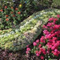 вариант применения красивых роз в дизайне двора фото