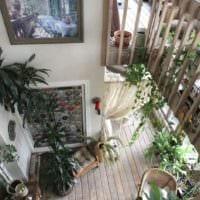 пример использования ярких идей оформления зимнего сада в доме фото
