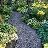 идея использования светлых садовых дорожек в ландшафтном дизайне картинка