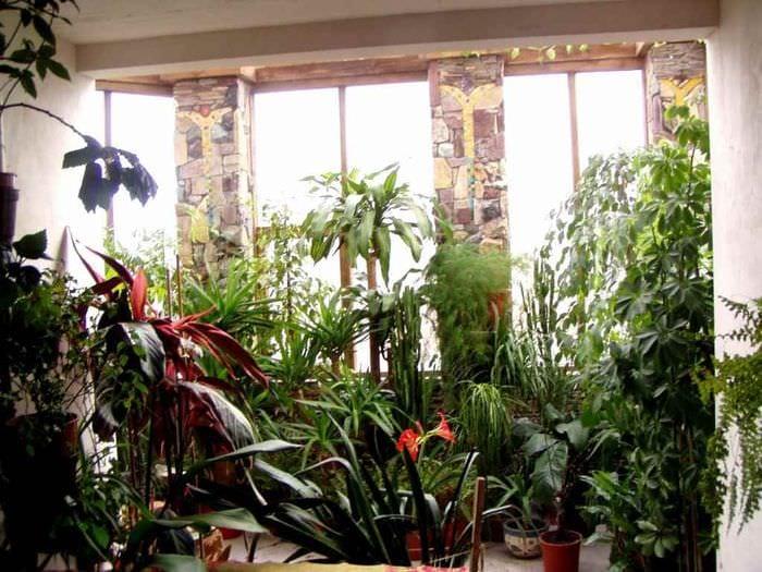 идея применения красивых идей оформления зимнего сада