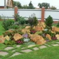 пример яркого декора огорода на даче фото