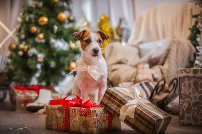 декор елки на год собаки