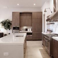 кухня столовая гостиная в частном доме в интерьере