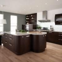 кухня венге фото дизайн
