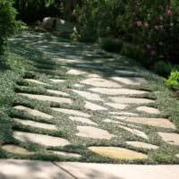 пример применения необычных садовых дорожек в дизайне двора картинка
