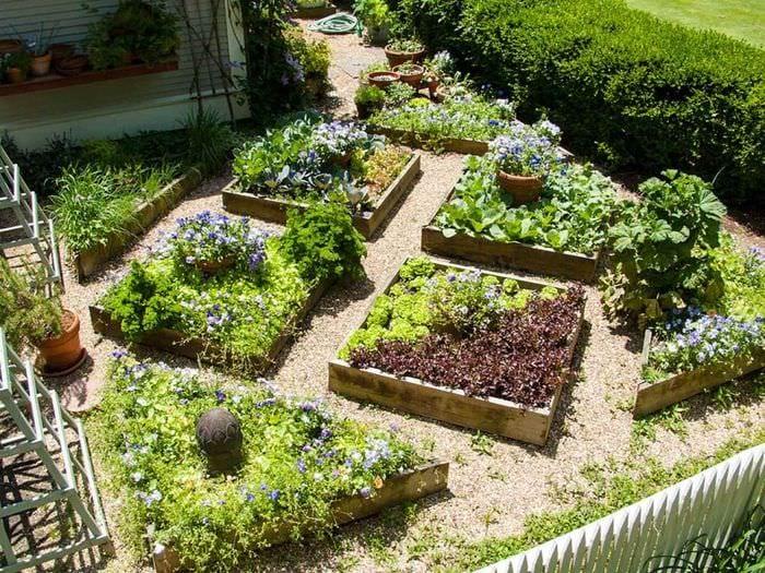 I дизайн огорода своими руками фото