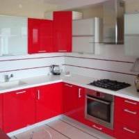 идея красивого интерьера кухни с газовой колонкой фото
