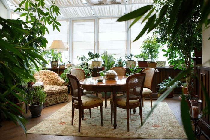 идея применения ярких идей оформления зимнего сада в доме