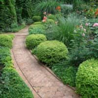 идея использования красивых садовых дорожек в дизайне двора фото