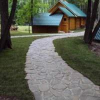 пример применения светлых садовых дорожек в ландшафтном дизайне картинка