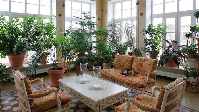 идея использования необычных идей оформления зимнего сада