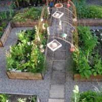 вариант яркого дизайна огорода на даче фото