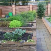 пример красивого декора огорода в частном дворе фото