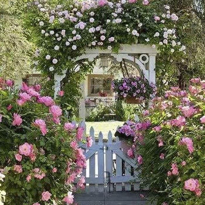 пример применения ярких роз в ландшафтном дизайне
