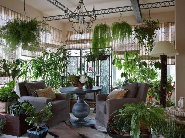 вариант применения светлых идей оформления зимнего сада в доме