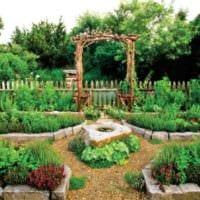 вариант светлого декора огорода на даче фото