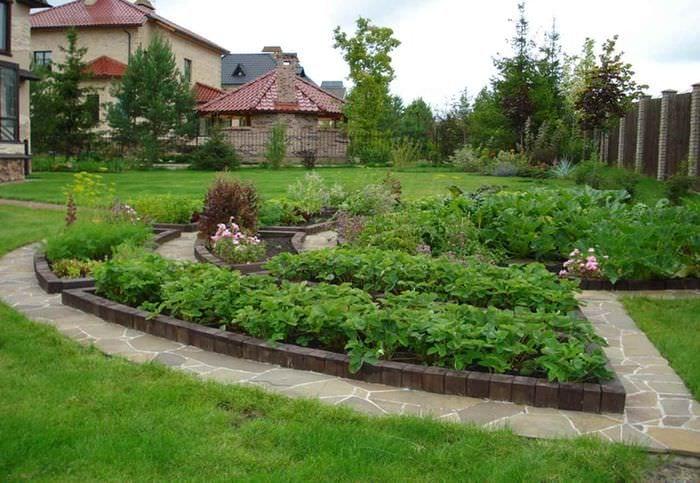 пример необычного декора огорода в частном дворе