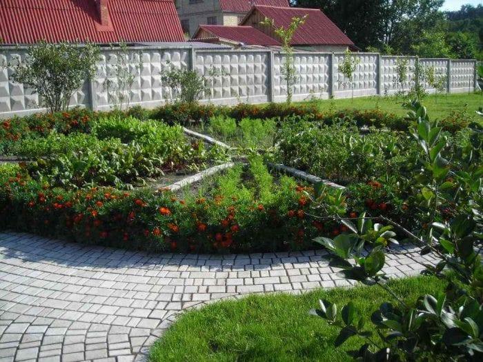 Как сделать сад из огорода 410