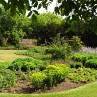 пример красивого декора огорода в частном дворе картинка