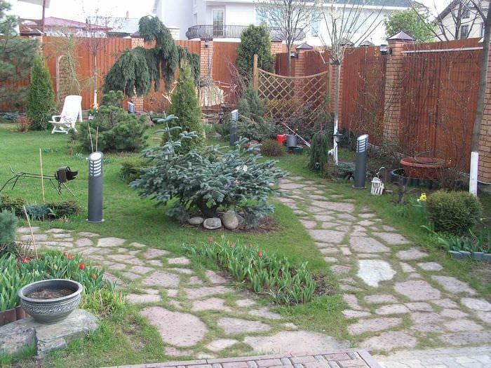 вариант применения светлых садовых дорожек в ландшафтном дизайне