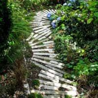 идея применения ярких садовых дорожек в ландшафтном дизайне картинка