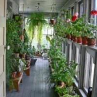 пример применения необычных идей оформления зимнего сада в доме фото