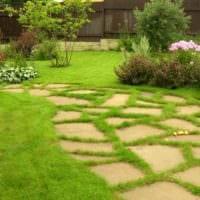 пример применения светлых садовых дорожек в дизайне двора фото