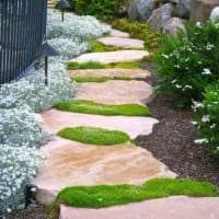 идея использования ярких садовых дорожек в дизайне двора фото