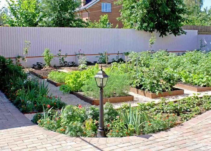 вариант красивого дизайна огорода в частном дворе