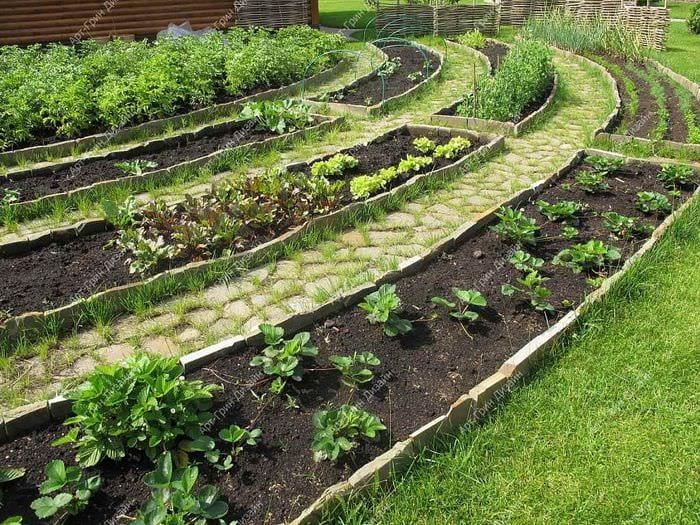вариант светлого декора огорода на даче
