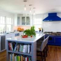 дизайн кухни с окном и синим гарнитуром