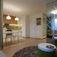 интерьер однокомнатной квартиры со спальней 36 кв м идеи фото